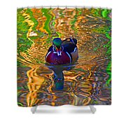 Colorful World Of Wood Duck Shower Curtain