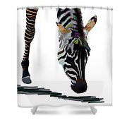 Colorful Zebra 2 Shower Curtain