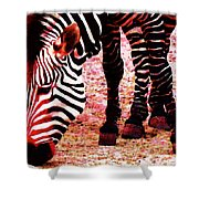 Colorful Zebra - Buy Black And White Stripes Art Shower Curtain