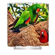Colorfully Bright Shower Curtain