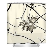 Colorless Autumn Shower Curtain
