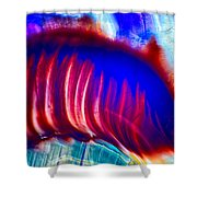 Colors Diving Shower Curtain