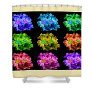 Colors Of Cactuses Shower Curtain
