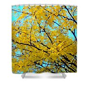 Colors Of Fall 1 Shower Curtain