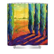Colors Of Summer 3 Shower Curtain