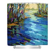 Colors Of Summer 9 Shower Curtain