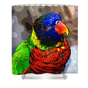 Colors Of The Lorikeet Shower Curtain