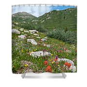 Colors Of The Rainbow - Colorado Mountain Summer Shower Curtain
