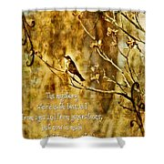 Colossians 1 26 Shower Curtain