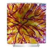 Colour Convolution Shower Curtain