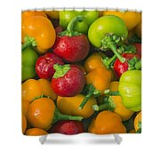 Colourful Mini Bell Peppers Shower Curtain