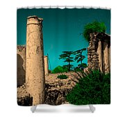 Colourful Ruins Shower Curtain