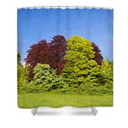 Colourful Trees Shower Curtain