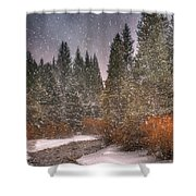 Colours Of Winter Shower Curtain by Juli Scalzi