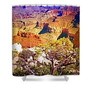 Colours Within The Canyon Shower Curtain by Tara Turner