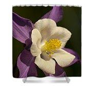 Columbine Floral Shower Curtain