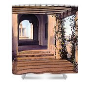 Columns And Flowers Shower Curtain by Terry Reynoldson