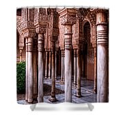 Columns Of The Court Of The Lions Shower Curtain