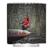 Come Here Often 2012-02-22 Shower Curtain