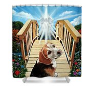 Come Walk With Me Over The Rainbow Bridge Shower Curtain