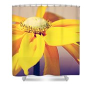 Comfort In Me Shower Curtain