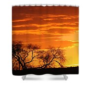 Coming Darkness Shower Curtain