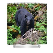Coming Downhill Shower Curtain