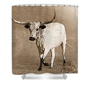 Coming Home In Sepia Shower Curtain