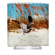 Windy Seagull Landing Shower Curtain