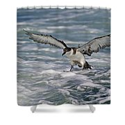 Coming In For Landing... Shower Curtain