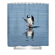 Coming In On A Tail And A Prayer Shower Curtain