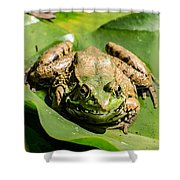 Coming To Take You Away Shower Curtain