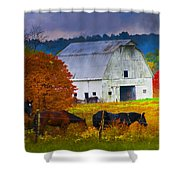 Coming To The Barn Shower Curtain