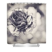 Coming Up In Black And White Shower Curtain