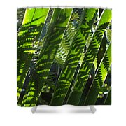 Common Beauty Shower Curtain