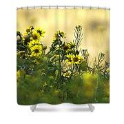 Common Brighteyes Natural Bouquet Shower Curtain