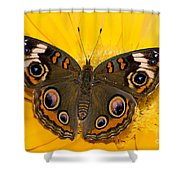 Common Buckeye Butterfly Shower Curtain