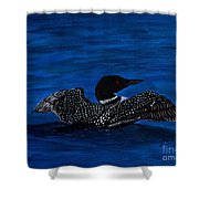 Common Loon Preening Shower Curtain