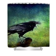 Common Raven Shower Curtain