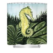 Common Seahorse Shower Curtain