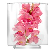 Common Snapdragon Shower Curtain