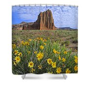 Common Sunflowers And  Temple Of The Sun Shower Curtain by Tim Fitzharris