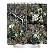 Common Yarrow Collage Shower Curtain