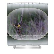 Common Yellowthroat - Bird Shower Curtain