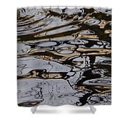 Composition Of Nature Shower Curtain