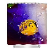 Conceive Shower Curtain by Charles Dobbs