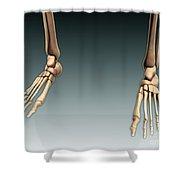 Conceptual Image Of Bones In Human Legs Shower Curtain