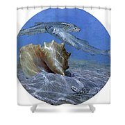 Conch And Ladyfish, 2001 Pair Shower Curtain