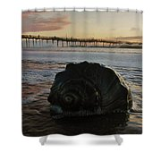 Conch Shell And Pier 2 10/17 Shower Curtain
