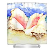 Conch Shells On Beach Shower Curtain